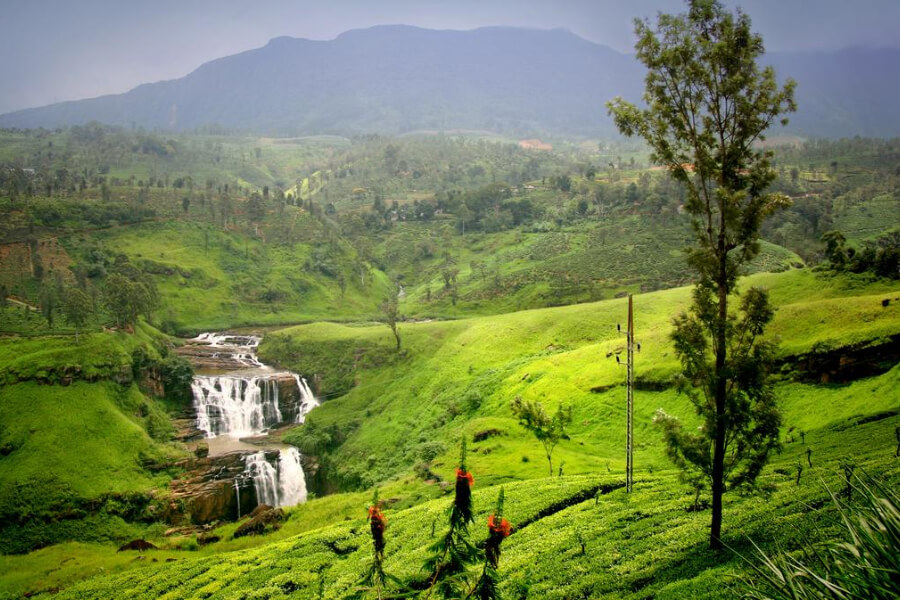 Hotels Sri Lanka Nuware Eliya Oak Ray Summer Hill Breeze24