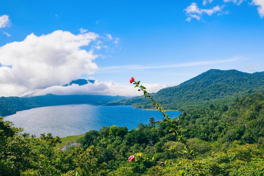 Indonesie Bali Buyan lake