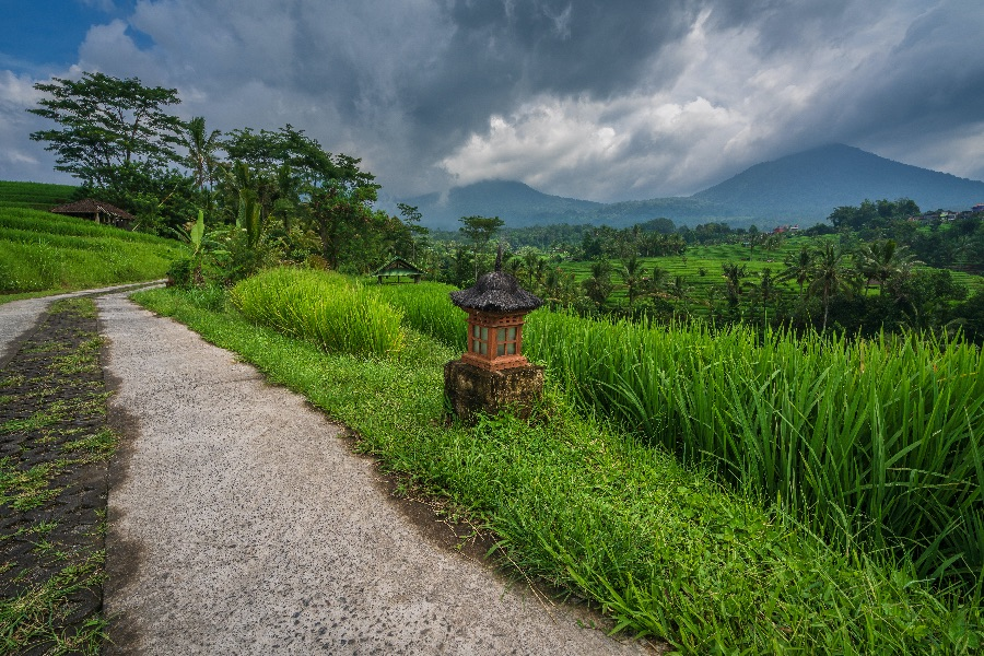 Indonesie Bali Tabanan