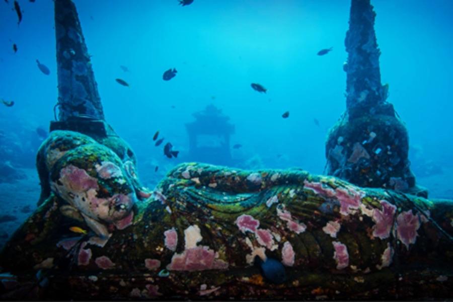 Indonesie Bali Tulamben onderwaterwereld