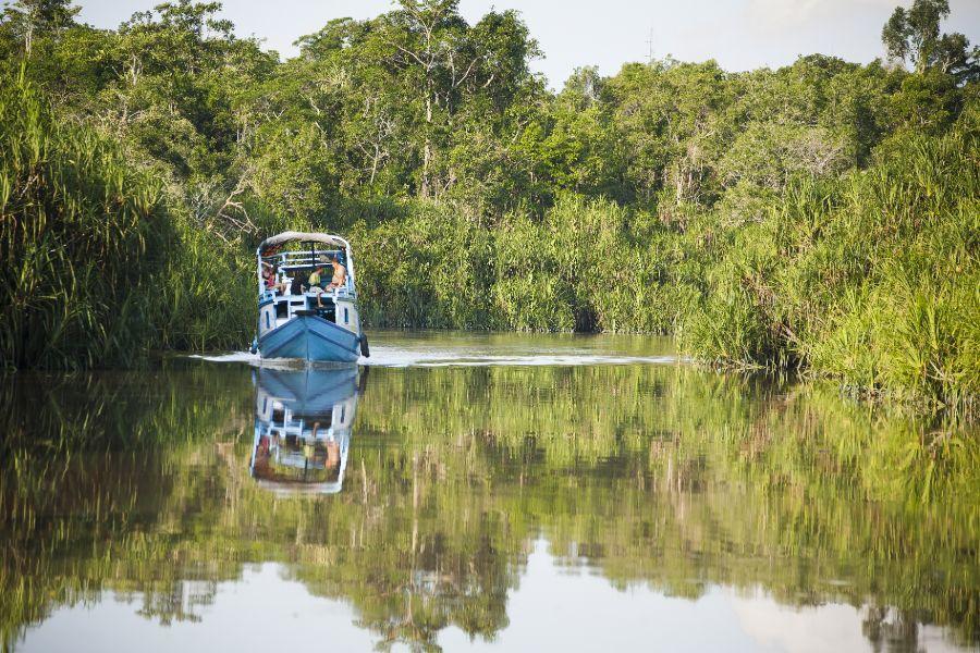 Indonesie Borneo lokale klotok boot op de Sekonyer rivier