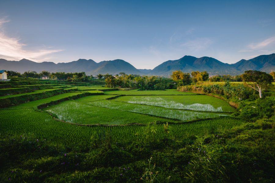 Dag 15: Bajawa – Ruteng