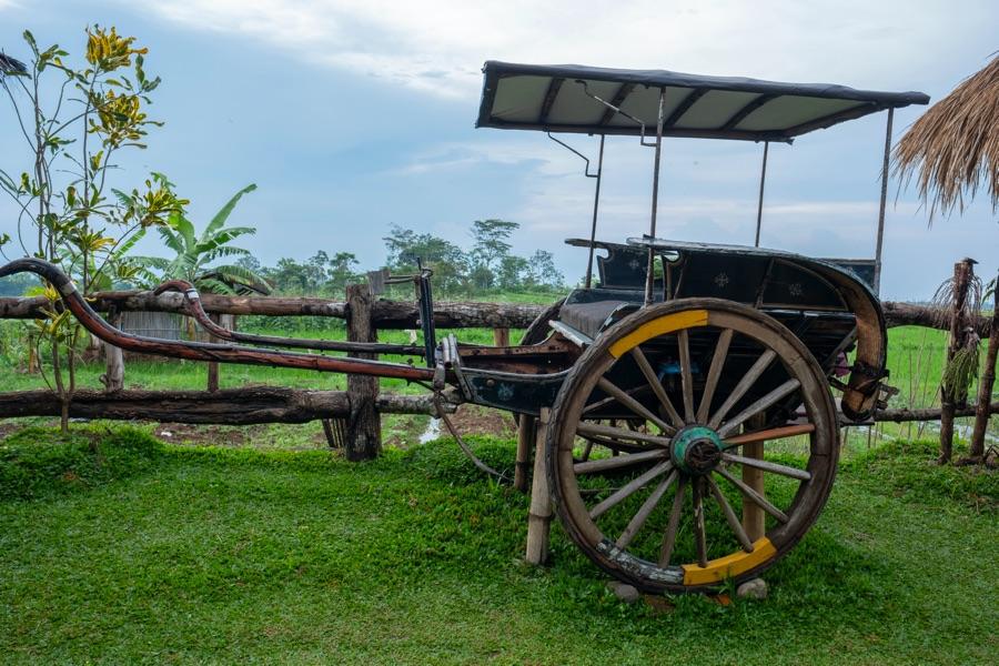 Indonesie Java Traditionele Andhong