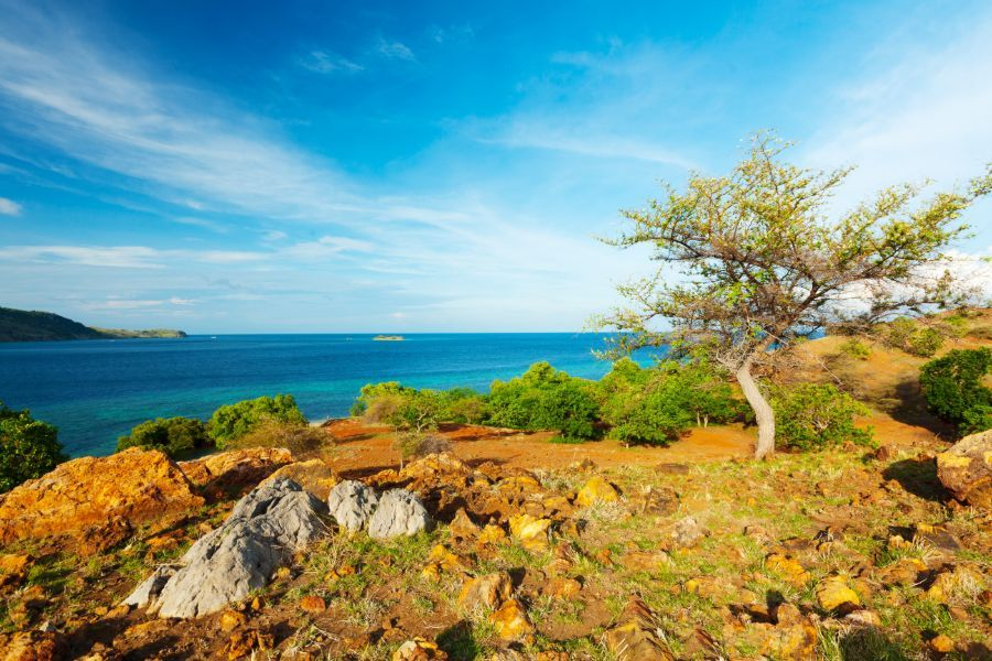 Indonesie Komodo landschap zee eiland