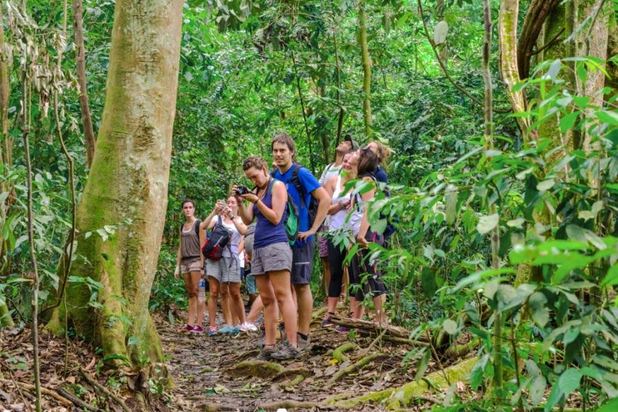Indonesie Sumatra Leuser Nationaal Park.