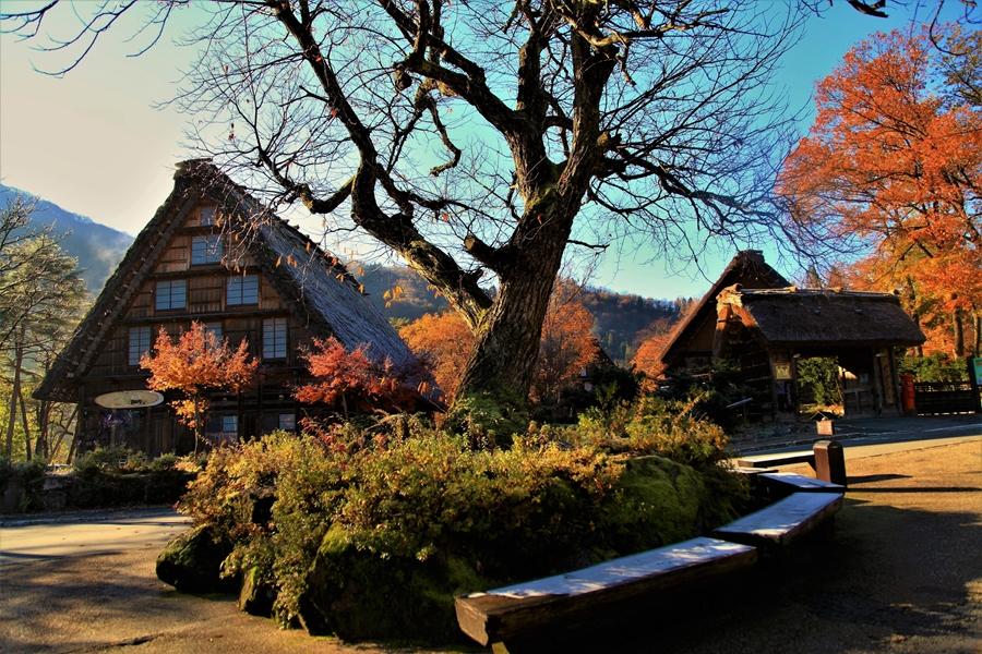 Japan Gify Shirakawago Traditioneel huis 1