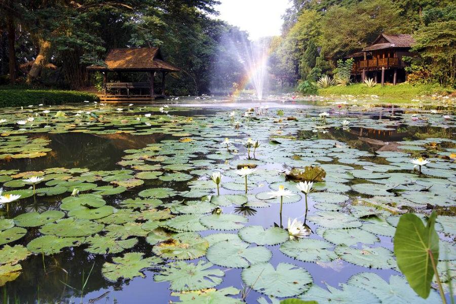 Lampang Lampang River Lodge10