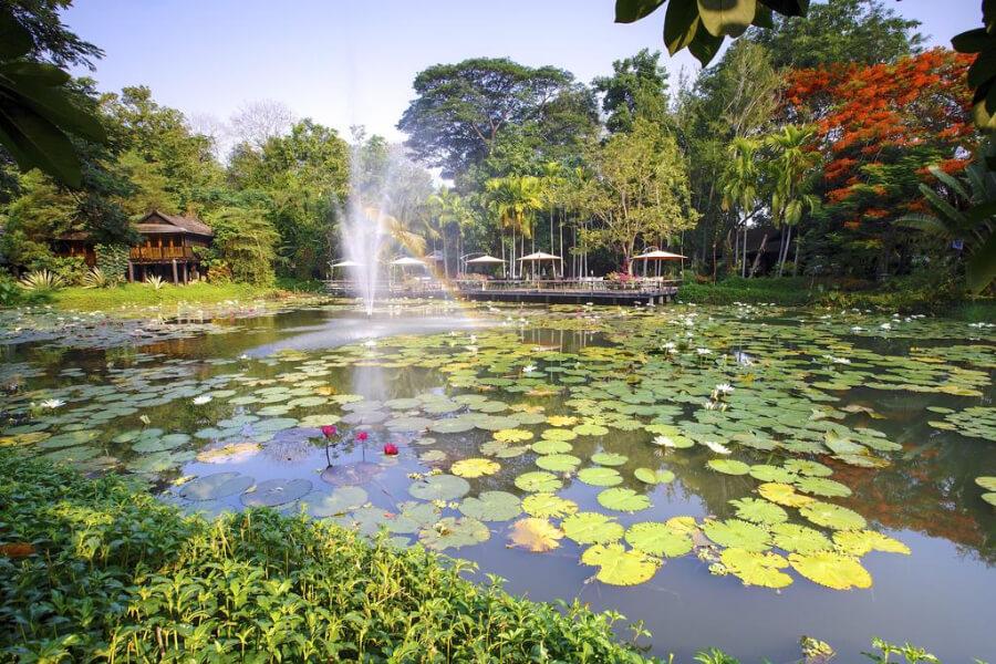 Lampang Lampang River Lodge11