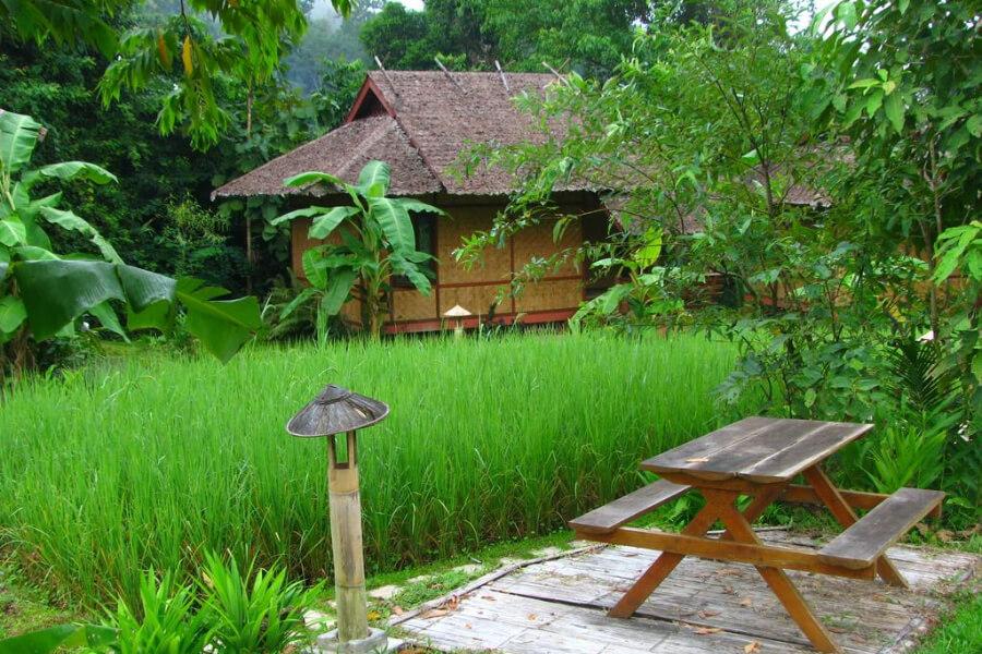 Maehongson Fern Resort Mae Hong Son5