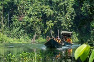 3-Daagse bouwsteen Belum Rainforest