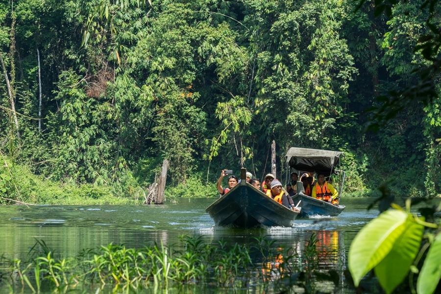 Dag 2: Belum Rainforest