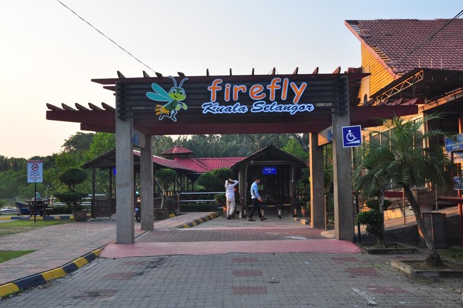 Maleisie Selangor Kuala Selangor Fireflies vuurvliegjes