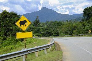 17-Daagse rondreis Hart van Maleisië (self drive)