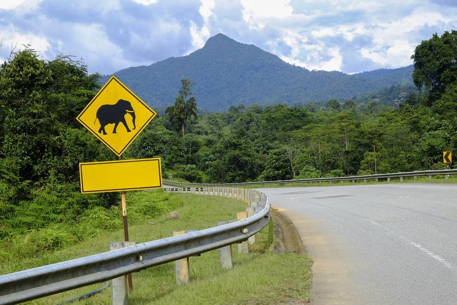 Gerelateerde tour 17-Daagse rondreis Hart van Maleisië (self drive)