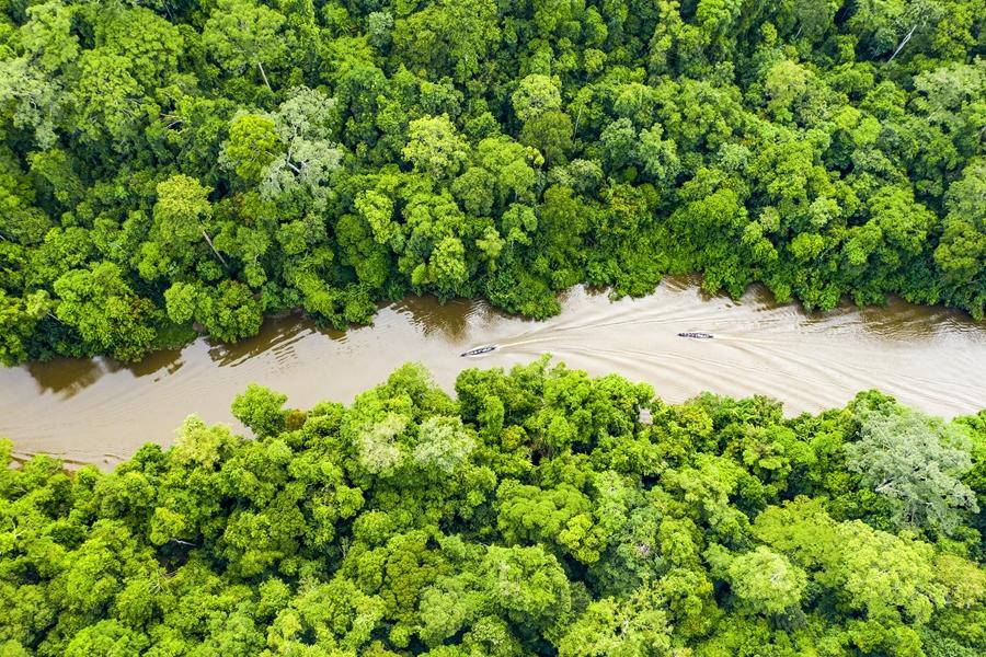 Maleisie Taman Negara Rivier van bovenaf