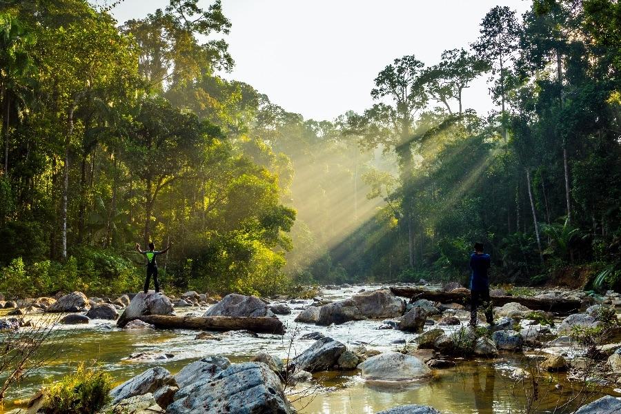 Maleisie Taman Negara