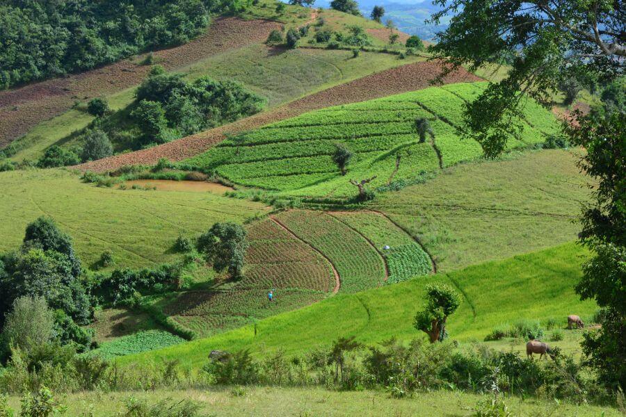 Myanmar Trekking van Kalaw naar Inle Lake 02