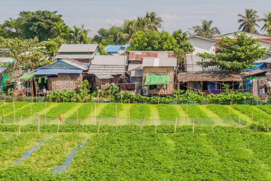 Myanmar Yangon buitenwijk farm huizen lokale leven