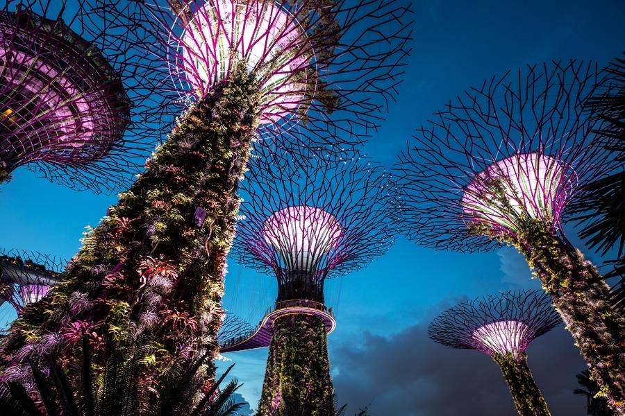 Singapore Gardens by the Bay dansende bomen 1