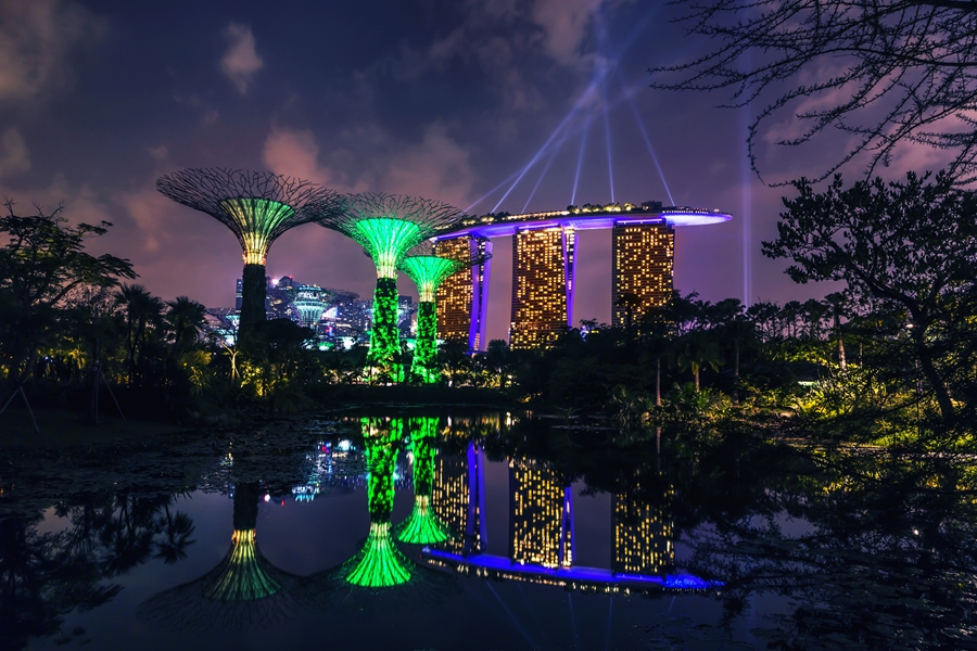 Singapore Gardens by the Bay dansende bomen 3