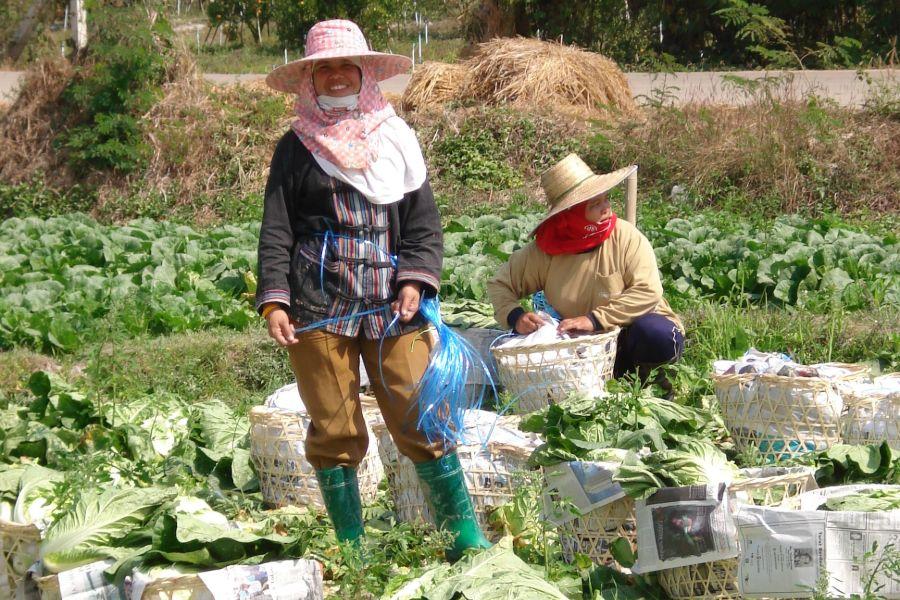 Dag 3: Chiang Dao – Mae Salak – 67 km