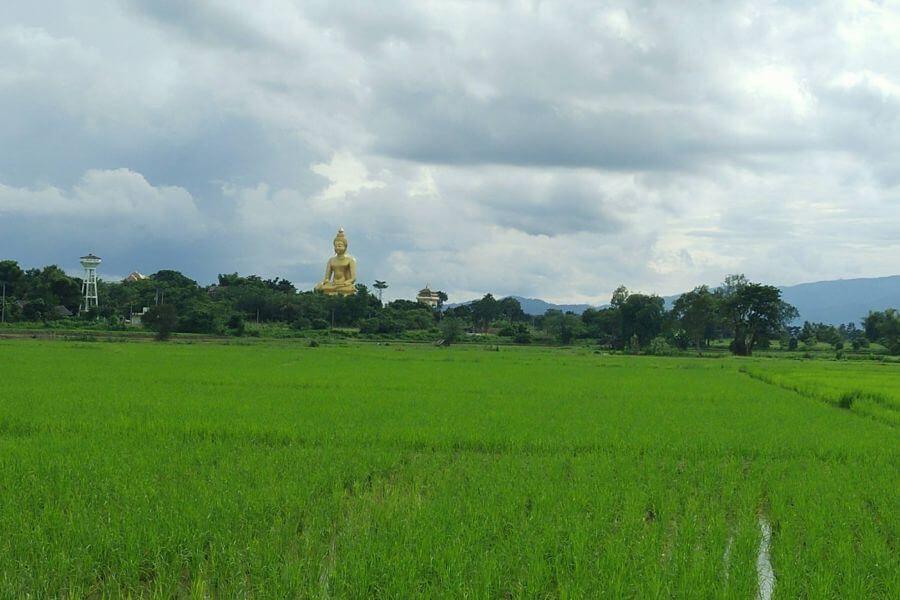 Thailand Chiang Mai Gouden driehoek fietstour boeddha