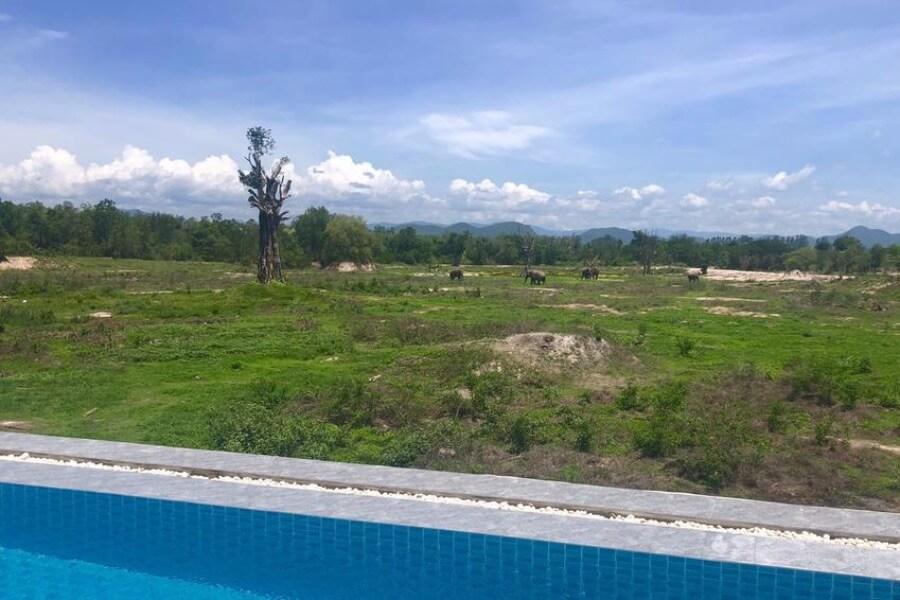 Thailand Phetchaburi I Love Phants Lodge 23