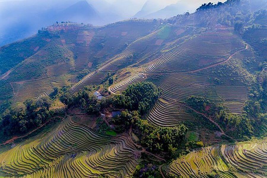 Vietnam Sapa Hotel Luckydaisys Homestay Rijstterrassen rijstvelden