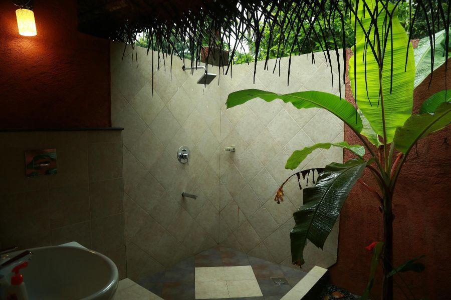 The Turmerica Resort, Wayanad