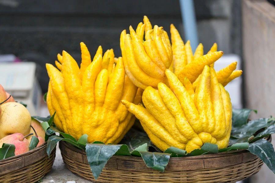 India fruit eten food Buddha's Hand