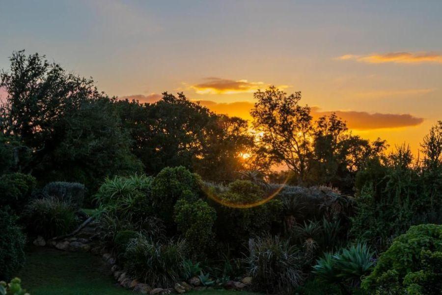 Bellevue Forest Reserve Paterson Zuid Afrika zonsopgang