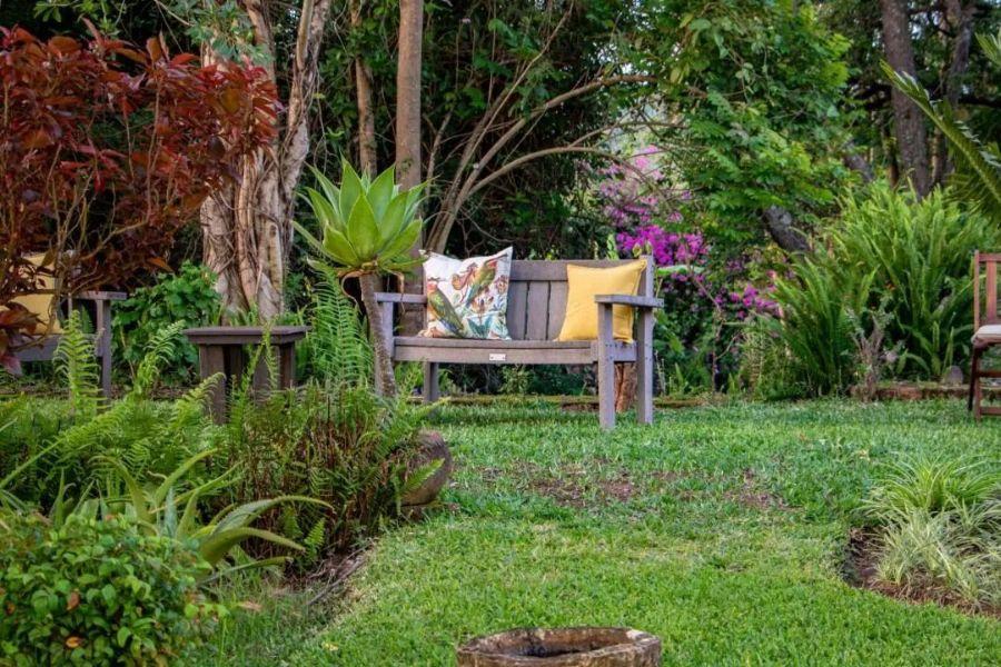 Gecko Lodge Hazyview Zuid Afrika tuin