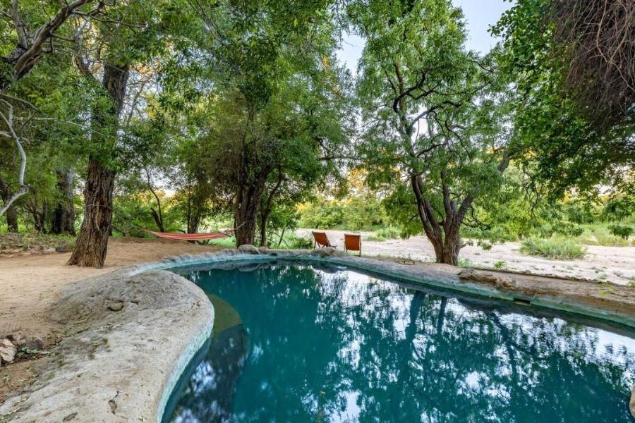 Umlani Bushcamp Timbavati Game Reserve Zuid-Afrika zwembad