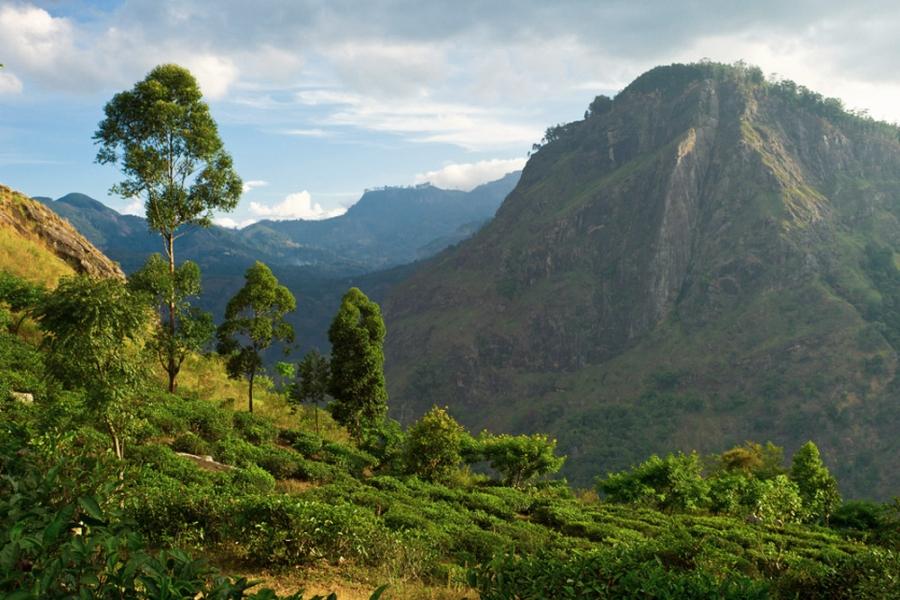 Sri Lanka Ella Hideaway Trails 01